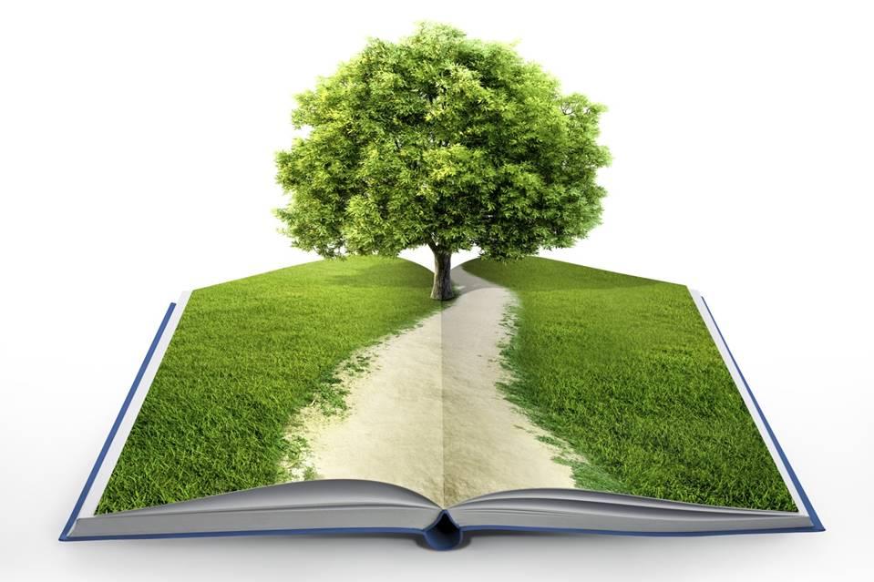 Внимание! Экологическая акция!!! «Green project SibFU»
